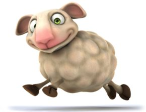 羊的选择(看懂的人很少)
