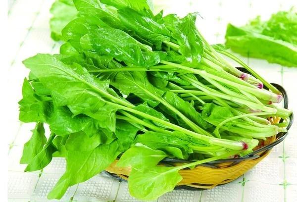 常见蔬菜保鲜小技巧和方法